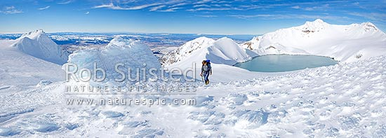 Tramper climbing past Dome Shelter (ice encrusted) near summit and Crater Lake of Mount Ruapehu (2797m Tahurangi Peak right). Ice textures in panorama, Tongariro National Park, Ruapehu District, Manawatu-Wanganui Region, New Zealand (NZ) stock photo.