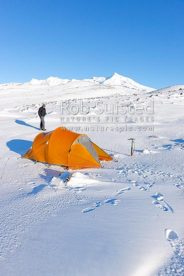 Trampers winter tent camp at dawn on the Round the Mountain Track of Mount Ruapehu. The barren Rangipo Desert landscape. Mt Ruapehu peak behind, Mt Ruapehu, Ruapehu District, Manawatu-Wanganui Region, New Zealand (NZ) stock photo.
