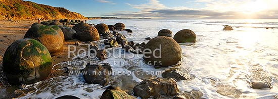 Moeraki Boulders / Kaihinaki on Koekohe Beach. 60 Million year old mudstone concretions. Lookout Bluff beyond. Panorama, Moeraki, Waitaki District, Otago Region, New Zealand (NZ) stock photo.