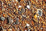 Stones and shells on beach