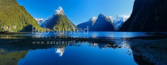 Mitre Peak reflecting in Milford Sound. Mitre Peak left (1683m), Stirling Falls centre, The Lion (1302m) and Mt Pembroke (2015m) right centre. Panorama, Milford Sound, Fiordland National Park, Southland District, Southland Region, New Zealand (NZ) stock photo.