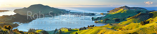 Otago Peninsula farmland and beaches around Hoopers Inlet. Allans Beach centre, Papanui Inlet left, and Sandy Mount right. Panorama, Otago Peninsula, Dunedin City District, Otago Region, New Zealand (NZ) stock photo.