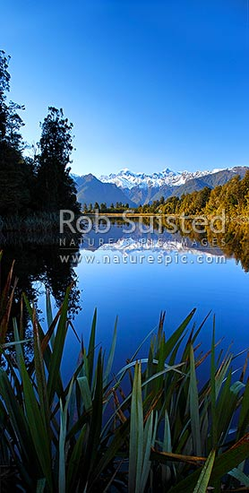 Lake Matheson. Morning calm reflections on lake with Aoraki / Mount Cook (right;3754m) and Mount Tasman (left;3498m). Vertical panorama, Westland National Park, Westland District, West Coast Region, New Zealand (NZ) stock photo.