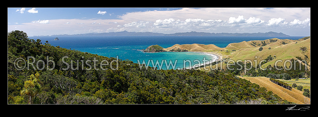 Image of Cape Colville (centre) and Port Jackson bay and beach at northern end of Coromandel Peninsula. Great Barrier (Aotea) Island beyond. Panorama, Cape Colville, Thames-Coromandel District, Waikato Region, New Zealand (NZ) stock photo image