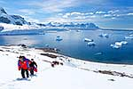 Antarctic visitors climbing hill