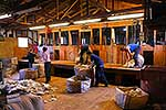 Shearing gang working in woolshed