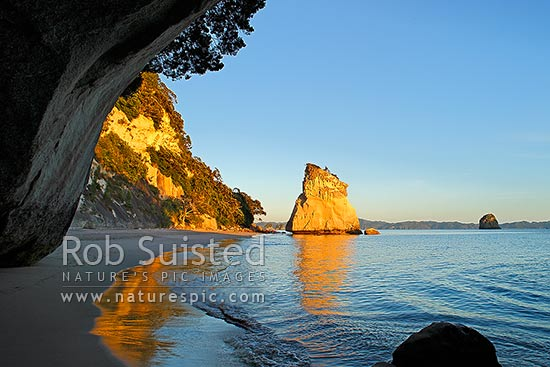 Cathedral Cove peaceful sunrise morning, looking through rock tunnel or cave. Coromandel Peninsula, Hahei, Coromandel Peninsula, Thames-Coromandel District, Waikato Region, New Zealand (NZ) stock photo.