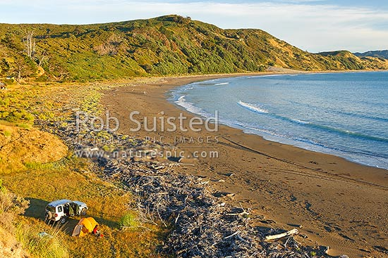 Port Awanui and Te Wharau Beach with tent campers and 4wd enjoying the summer morning, Port Awanui, East Coast, Gisborne District, Gisborne Region, New Zealand (NZ) stock photo.