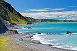 Palliser Bay coast