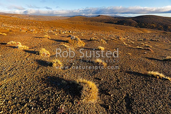 Rangipo Desert volcanic landscape on the Round the Mountain Track on Mt Ruapehu, Tongariro National Park, Taupo District, Waikato Region, New Zealand (NZ) stock photo.