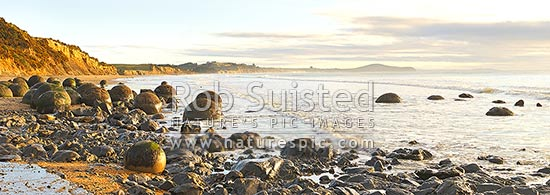 Moeraki Boulders / Kaihinaki, 60 Million year old mudstone concretions at sunrise with Lookout Bluff distant right. Panorama, Moeraki, Waitaki District, Canterbury Region, New Zealand (NZ) stock photo.