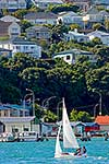 Sailing in Wellington