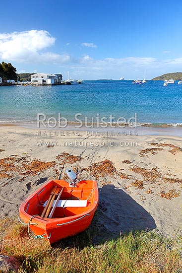 Halfmoon Bay, and wharf, with a dinghy pulled up at the main town on Stewart Island, Rakiura, Halfmoon Bay, Oban, Stewart Island District, Southland Region, New Zealand (NZ) stock photo.