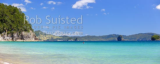 Hahei beach in summer with a lone sea kayaker paddling along the coast. Panorama, Hahei, Coromandel Peninsula, Thames-Coromandel District, Waikato Region, New Zealand (NZ) stock photo.
