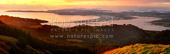 Omaha Beach, Takatu Pont and Ti Point (left) and Whangateau Harbour, with Kawau Island far left. Sunrise. Panorama, Leigh, Rodney District, Auckland Region, New Zealand (NZ) stock photo.