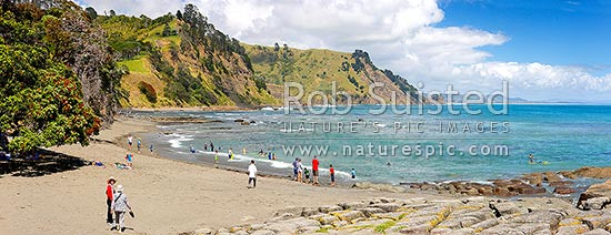 Goat Island (Cape Rodney-Okakari Point) Marine Reserve and beach with summer visitors. Panorama, Leigh, Rodney District, Auckland Region, New Zealand (NZ) stock photo.