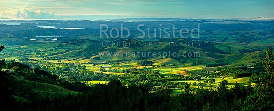 Omaha Valley and Big Omaha farmland in morning light. Matakana River and Harbour beyond. Panorama, Omaha, Rodney District, Auckland Region, New Zealand (NZ) stock photo.