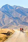 Molesworth Road cycling