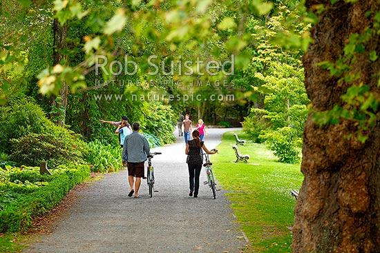 People enjoying the Christchurch Botanical Gardens, walkers and cyclists, Christchurch, Christchurch City District, Canterbury Region, New Zealand (NZ) stock photo.