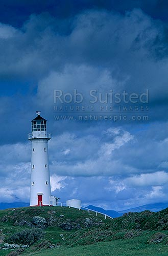 Cape Egmont Light house, Cape Egmont, Taranaki, South Taranaki District, Taranaki Region, New Zealand (NZ) stock photo.