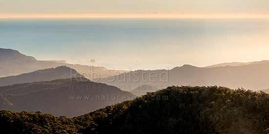Rapahoe, Elizabeth Point, Seven Mile, seen from Paparoa Range and Sewell Peak in late afternoon sun. Panorama, Greymouth, Grey District, West Coast Region, New Zealand (NZ) stock photo.