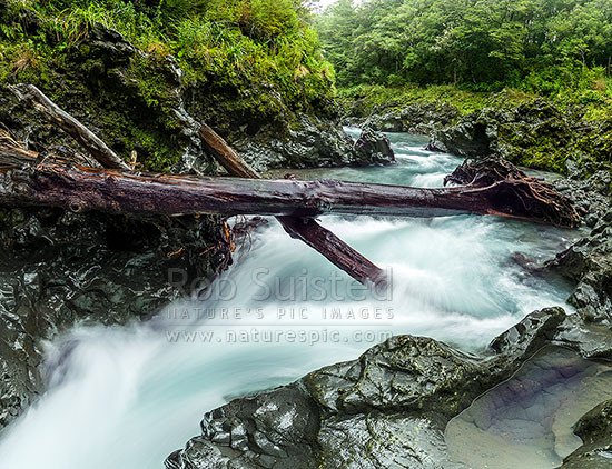 Tongariro River in the wild upper reaches, with large log jams from previous floods, Kaimanawa Forest Park, Taupo District, Waikato Region, New Zealand (NZ) stock photo.