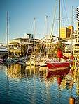 Auckland's Viaduct Basin harbour