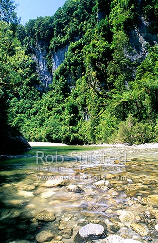 Fox River cutting through limestone country, Paparoa National Park, Buller District, West Coast Region, New Zealand (NZ) stock photo.