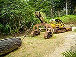 Old logging bulldozer, Pureora Forest