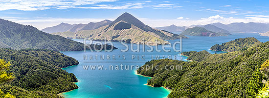Fitzroy Bay in Pelorus Sound, Marlborough Sounds. Mt Shewell (775m) centre. Maud Island and Tawhitinui Reach far right. Panorama, Marlborough Sounds, Marlborough District, Marlborough Region, New Zealand (NZ) stock photo.