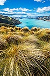 Akaroa harbour, Banks Peninsula