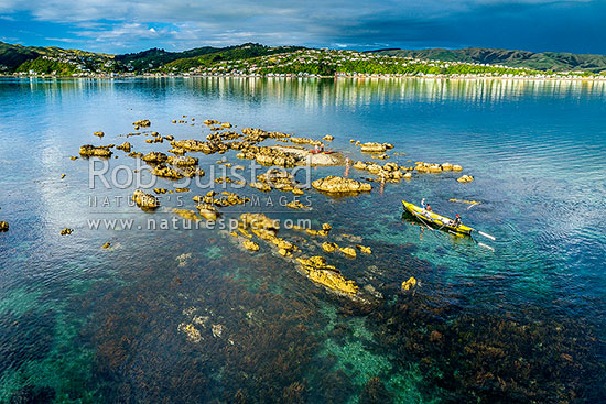 Grandfather Rocks (Tokaapapa Reef) off Plimmerton Beach, with visitors in kayaks and surfboat enjoying the calm summer evening. Aerial view, Plimmerton, Porirua City District, Wellington Region, New Zealand (NZ) stock photo.