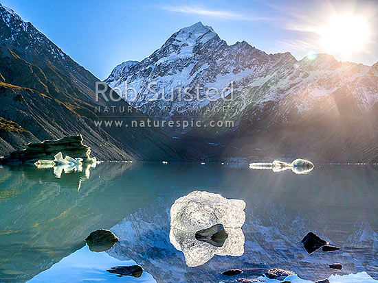 Aoraki / Mount Cook (3754m) above Hooker Glacier and Hooker Lake with floating ice. Sun rising over the Mt Cook Range. Square format, Aoraki / Mount Cook National Park, MacKenzie District, Canterbury Region, New Zealand (NZ) stock photo.