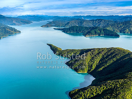 Blumine Island (Oruawairua) in Queen Charlotte Sound (Totaranui), with Snake Point and Bay of Many coves beyond. Looking south towards Picton. Aerial view, Marlborough Sounds, Marlborough District, Marlborough Region, New Zealand (NZ) stock photo.