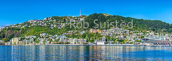 Wellington City panorama of Oriental Bay and Mount Victoria. St Gerards Monastry centre right. Iconic view of well known Welligton suburb, Wellington Harbour, Wellington City District, Wellington Region, New Zealand (NZ) stock photo.
