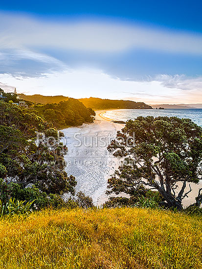 Otama beach sunset, looking towards Motuhua Point, with homes and baches above at sunset, Otama Beach, Coromandel Peninsula, Thames-Coromandel District, Waikato Region, New Zealand (NZ) stock photo.