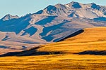 MacKenzie Basin high country