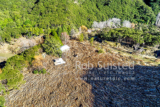 Tolaga Bay floods in June 2018 brought large amounts of forestry timber slash down Mangatokerau River, smashing Amber Kopua's 100 yr old house 30m off piles. Aerial view, Tolaga Bay, Gisborne District, Gisborne Region, New Zealand (NZ) stock photo.