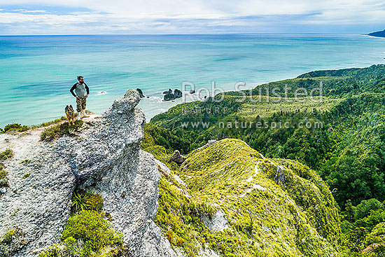 Mt George walkway (320m) above the Rapahoe Coast and Motukiekie Rocks. Walkway visitor and dog enjoying spectacular views. Paparoa Range. Aerial view, Rapahoe, Grey District, West Coast Region, New Zealand (NZ) stock photo.