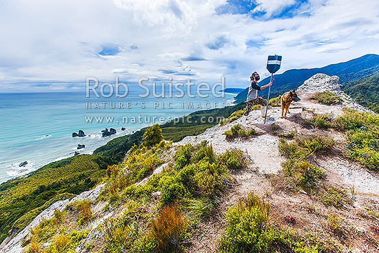 Mt George walkway (320m) above the Rapahoe Coast and Motukiekie Rocks. Walkway visitor at old summit trig station, with spectacular views towards Punakaiki. Paparoa Range, Rapahoe, Grey District, West Coast Region, New Zealand (NZ) stock photo.