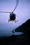 Helicopter relocation of weka