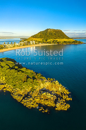 Mount Maunganui Beach and Mt Mauao, at Tauranga Harbour Entrance. 231m high lava dome above Mt Maunganui Beach. Moturiki Island below. Aerial view, Mount Maunganui, Tauranga District, Bay of Plenty Region, New Zealand (NZ) stock photo.