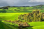 Waikato farmland, wetland and forest