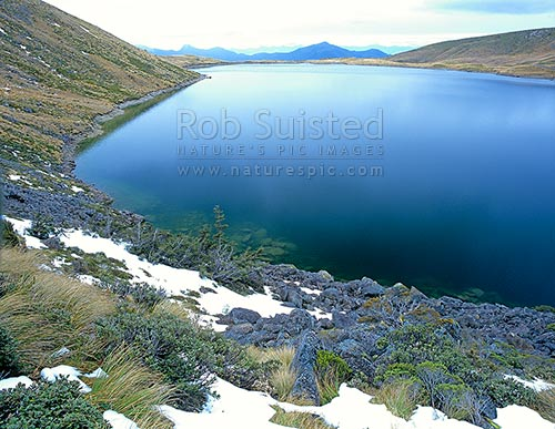 Beautiful 'greenstone coloured' waters of Lake Sylvester (1325m), Cobb Valley tops, Kahurangi National Park, Tasman District, Tasman Region, New Zealand (NZ) stock photo.