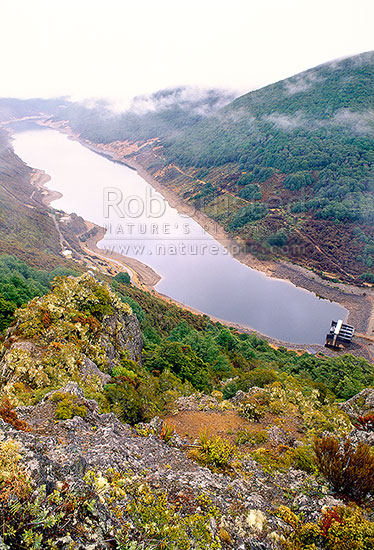 Looking down on Cobb Reservoir, Kahurangi National Park, Tasman District, Tasman Region, New Zealand (NZ) stock photo.