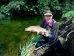 Trout fishing - brown trout